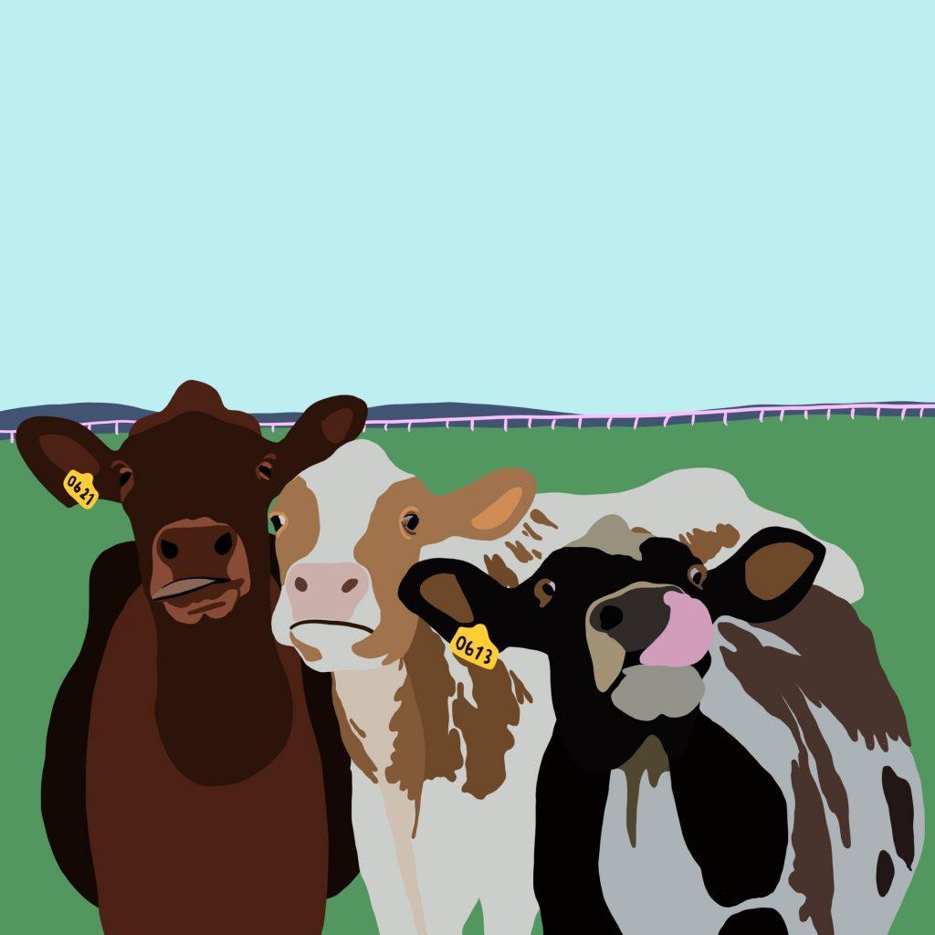 Kyr på jordet, Illustrasjon