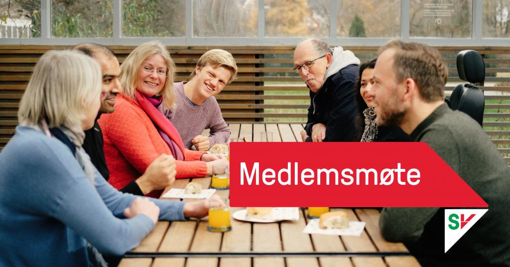 Medlemsmøte-banner. Diskusjon mellom medlemmer. Grafikk over foto.