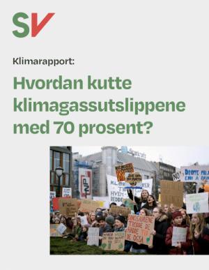 Klimarapport: Hvordan kutte klimagassutslippene med 70 prosent? - Unge klimastreikere utenfor Stortinget. Fotografi